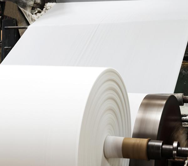 دراسة جدوى مصنع للورق