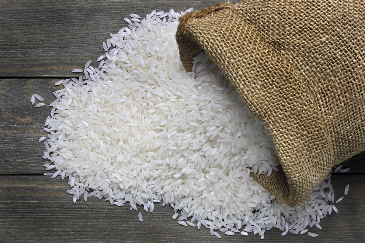 دراسة جدوى مشروع تعبئة ارز