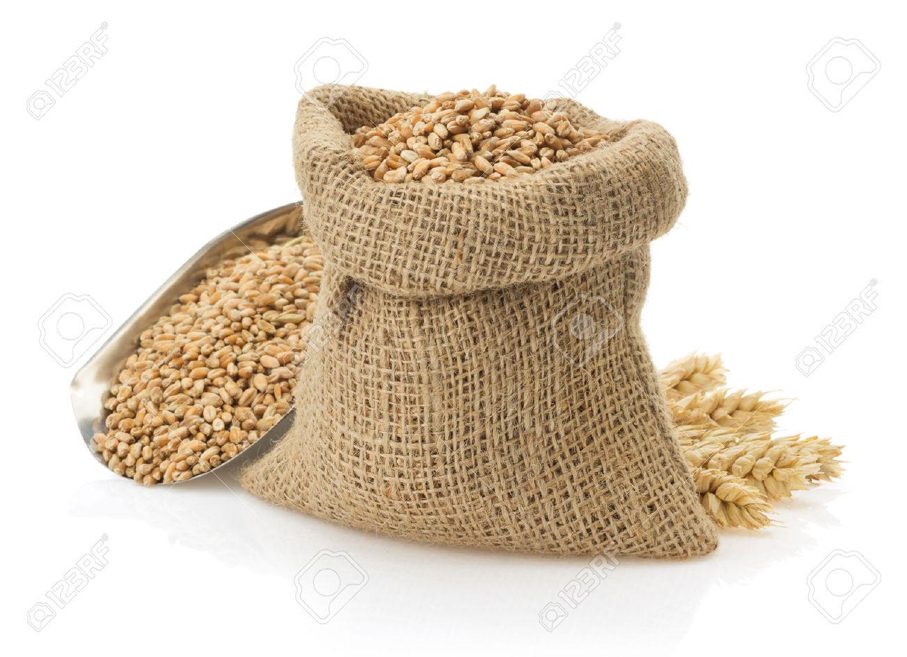 دراسة جدوى مشروع تعبئة الحبوب
