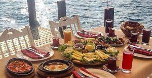 شركة مطاعم تركية