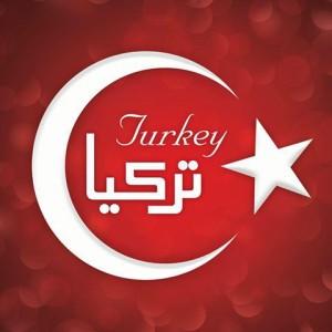 ماذا تستورد تركيا من الخارج